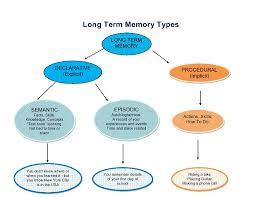 Types Of Memory Chart Memory 102 To Store Or Not To Store Short Term Memory To