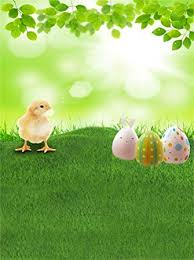 Buy <b>Laeacco</b> 3x5ft Easter Backdrop Painted Eggs Bunny Chick ...