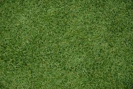 artificial grass texture. Artificial Grass Surfacing Texture