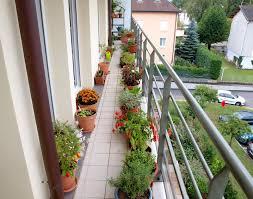 Balcony Kitchen Garden Garden Design Garden Design With Best Flowers For Balcony Garden