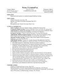 Professional Nursing Resume Professional Nursing Resume Ii