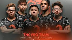 tnc pro team player intro the international 2017 dota 2 youtube