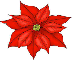 Poinsettia Printable Clipart Images Gallery For Free