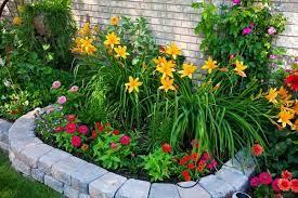 small flower gardens backyard flowers