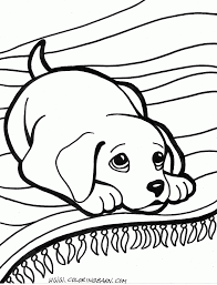 Small Picture Puppy Colotring Pages