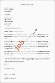 Modern Resume Template 43