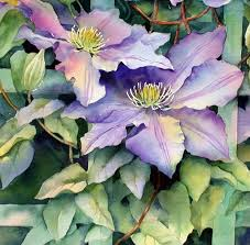 this shows a section of a clematis painting where i have used the negative painting method to portray the leaves