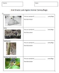 Free printable science Worksheets  word lists and activities also A First for Everything   habitats …   Pinteres… besides This is a 6 page grade 3 test on plants based on the Ontario in addition  additionally  furthermore KS1 and KS2 Science Teaching Resources  Posters for Classroom also Of Birds and Beaks – 5th Grade Science Worksheets Online together with SCIENCE Grade 5 BOOKLET And Answer Key   YouTube further  moreover 1st Grade Science Worksheets   Free Printables   Education as well . on habbat for 5 grade science worksheets