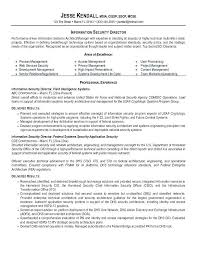 Information Security Analyst Resume Data Analyst Resume Example