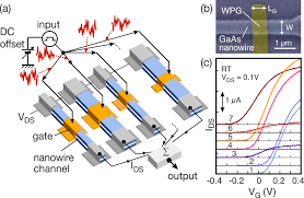 color online a schematic of nanowire fet summing network v th color online a schematic of nanowire fet summing network v th variation the nanowire width and gate length were artificially modulated to achieve v th
