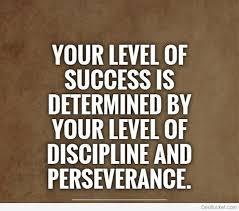 Discipline Quotes Amazing 48 Best Discipline Quotes Sayings