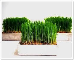 artificial wheat grass arrangement home accent decor best