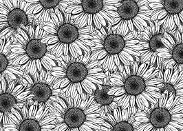 tumblr backgrounds black and white pattern. Plain Black Bohochicstyletumblr  Buscar Con Google For Tumblr Backgrounds Black And White Pattern R