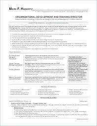 Resume Objective Statements For First Job Best of Free Sample Resume Objectives Igniteresumes