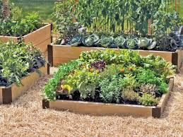 Small Picture garden ideas Beautiful Raised Garden Bed Design Raised Garden