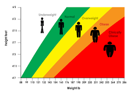 Underweight Normal Overweight Obese Chart Misused Or Misunderstood The History Of The Body Mass Index