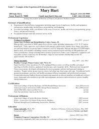 Resume Work Experience Samples Therpgmovie
