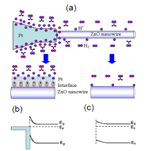 junction properties and applications of zno single nanowire based a schematic diagram of the pt zno single nanowire hydrogen sensing mechanism schematic