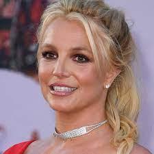 Britney Spears' staff 'took dogs away ...