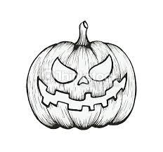 pumpkin drawing. vector of hand draw halloween pumpkin : art drawing
