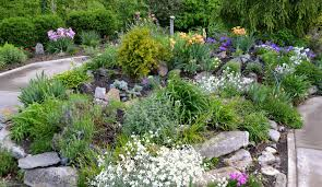 Small Picture Exterior Rocks For Garden Beds Rock Garden Bed Ideas Small Home