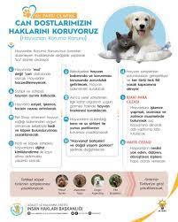 """hatice uslu #EvdeKal on Twitter: """"Hayvanları Koruma Kanunu TBMM Genel  Kurulunda kabul edilerek yasalaştı. Hayırlı uğurlu olsun. #MalDeğilCan  #hayvanhaklarıyasası… https://t.co/UymHRan6dA"""""""