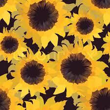 Sunflower Pattern Adorable Sunflower Flower Seamless Pattern Stock Vector Colourbox