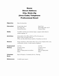 Resume Sample For High School Student No Experience Resume