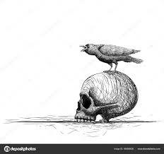 ворон птица окуня на череп изолированные на белом фоне рука