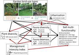 indirect effects of urban gardening
