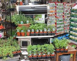 the garden centre at masstown market great selection of seeds and vegetables