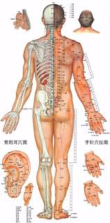 how many sessions of acupuncture for back pain