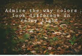 Beautiful Rainy Day Images With Quotes