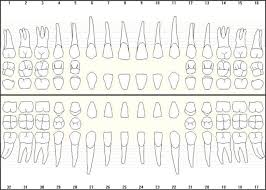 Manual Charting In Dentistry Making Entries In The Patient Records Dental Records Best
