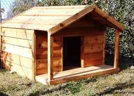 dog house plans for large dogs inspirational doghouse for multiple dogs charming dog house plans for