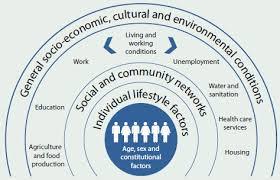 Australias Health 2016 Chapter 4 Determinants Of Health