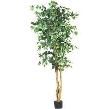 Decorative Indoor Trees Nearly Natural 5209 Ficus Silk Tree 6 Feet Green Walmartcom