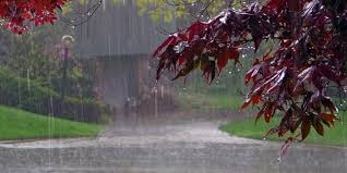essay on seasons in summer rainy autumn and winter rainy season to the rainy season in begins generally from the second week of and continues up to the second week of