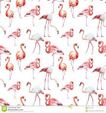 Flamingo Pattern Awesome Flamingo Pattern Stock Vector Illustration Of Nature 48