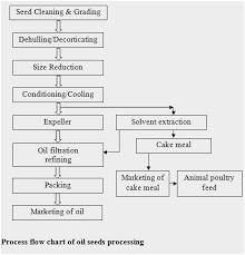 46 True Cake Processing Flow Chart
