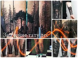 значение тату лес фото рисунков смысл эскизы история толкование
