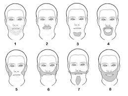 Facial Hair Wikipedia