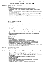 Junior Planner Resume Samples Velvet Jobs