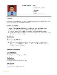 Sample Resume Format Download Or Example Resume For Entrepreneur