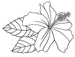 Flowers Coloring Gyerekpalotainfo