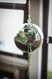 weekend project alert 20 diy terrariums to inspire you