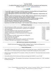 Sap Sd Sample Resume Sap Sample Resumes Sap Sd Testing Sample Resume