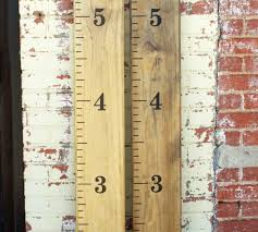 2x4 Ruler Growth Chart Guides Using A Quick Dry Poly Snapguide