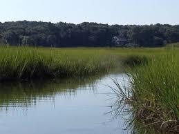 Barnstable Harbor Tide Chart 2016 Scorton Creek Fun Review Of Scorton Creek East Sandwich