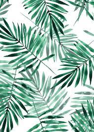 Palm Leaf Pattern Amazing Palm Leaves Pattern Poster
